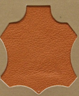 Extralux Orange