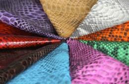 Various Snake Skin Colors