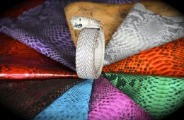 Various Snake Skin Colors with Real Snake Belt