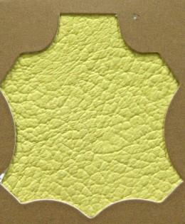 Madras Yellow 115